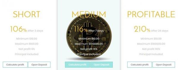 crypto-asset.com обзор, crypto-asset.com отзывы, crypto-asset.com хайп, crypto-asset.com инвестиции, crypto-asset.com рефбэк, crypto-asset.com hyip, crypto-asset.com rcb