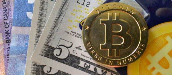 BitCoin, плачу, более, убыток, РефБэка, РефБэк, можете, Читать, далее, данной, криптовалюте, прекращаю, выплаты, способ, найду, какой, другой, выгодный, РефБэки, Payeer