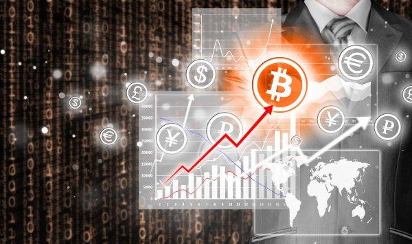 хочет, площадка, прибыль, валюте, другой, операции, торговой, будут, площадке, осуществляться, соответствует, полностью, бирже, криптовалют, решения, означает, внутренние, платформы, случае, только
