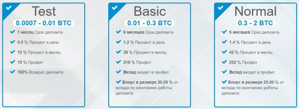 deposit, Accruals, Profit, Bonus, Period, mounth, included, payments, months, funds, Withdrawal, program, referral, BitCoin, Ethereum, money, Payeer, systems, Payment, PerfectMoney