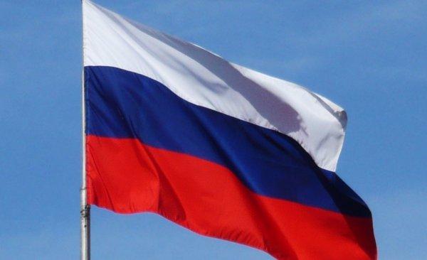 русскоговорящих, инвесторов, добавлен, Русский, просьбам, многочисленным, ArchWood, отличные, новости, проекте