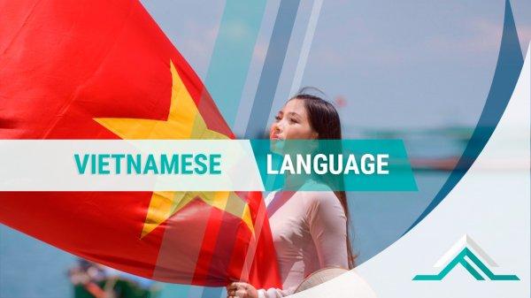 теперь, доступны, Вьетнамском, языке, сайта, Материалы, Cottage, Smart, более, мультиязычным, Проект