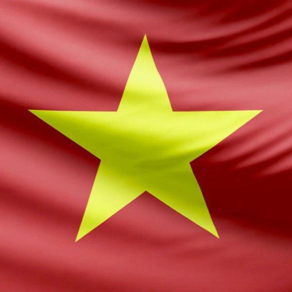 сайта, материалы, доступны, также, языке, Вьетнамском, Теперь, стран, продолжает, Ellaos, развиваться, привлекать, разных, инвесторов, Проект