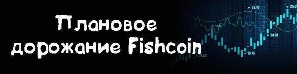 монет, Fishcoin, монеты, возможность, вечером, Время, выпуска, утром, Выпуск, Монеты, выпускаются, рандомное, «ФИШКОИНА», Лимит, будет, обналичивать, FishCoin, рубли, последние, пользователя