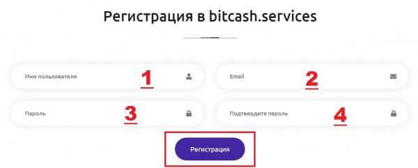 bitcash.services обзор, bitcash.services отзывы, bitcash.services инвестиции, bitcash.services вложения, bitcash.services хайп, bitcash.services страховка, bitcash.services рефбэк, bitcash.services hyip, bitcash.services rcb