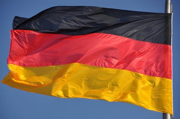 Проект, Binapex, продолжает, развиваться, Материалы, сайта, теперь, доступны, немецком, языке